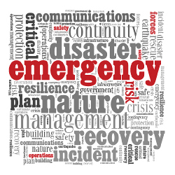 Risk Society Disaster Emergency Nature